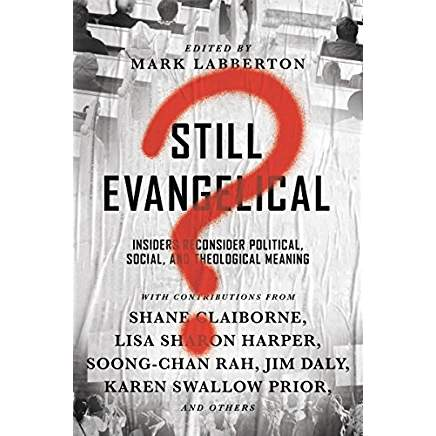 "I've been published!   Here's my review of ""Still Evangelical?"""